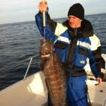 kattfisk6kg