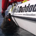 Fiskeoutdoor flundra
