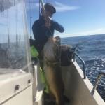 Blandat fiske!