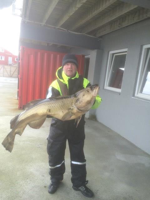 Ulf Kvist med en riktigt fin torsk på 15 kg, grattis!